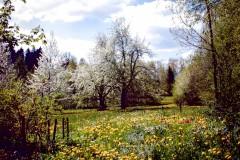 Waldkulturscheune-Villingen-Schwenningen